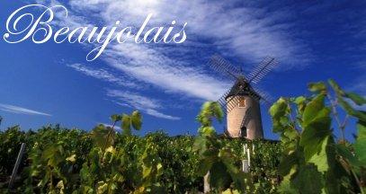 oenotourisme en beaujolais vin