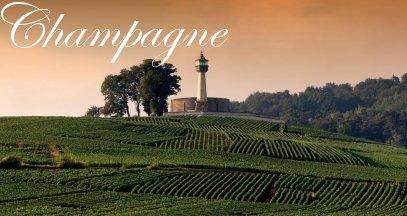 Oenotourisme champagne vin