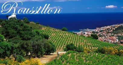 Oenotourisme roussillon vin