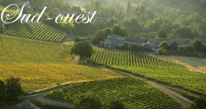 Oenotourisme sud-ouest vin