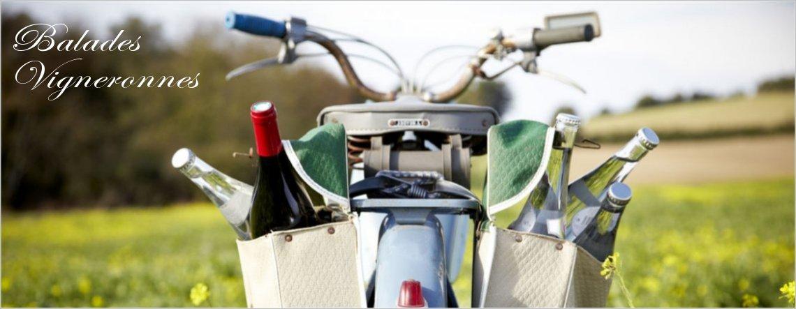 oenotourisme tourisme et vins