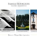 BOURGEOIS-Henri