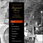 Champagne-BARNAUT-BOUZY