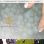 Champagne-GOUSSARD-DELAGNEAU