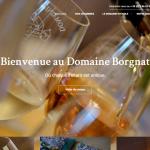 Domaine-BORGNAT