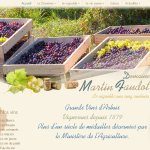 Domaine-MARTIN-FAUDOT