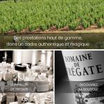 Domaine-de-FREGATE