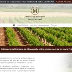 Domaine-de-MALAVIEILLE