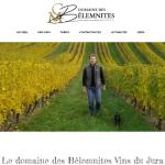 Domaine-des-BELEMNITES