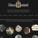 chateau-de-montmirail